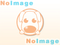 仔犬No:2/チワワの女の子