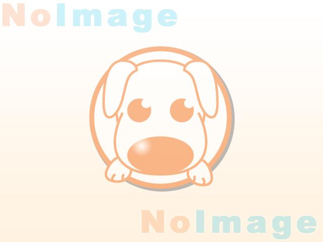 日本ペットシッターサービス日高店 MON写真1