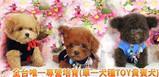 幼隆(ヨーロー)名犬飼育センター